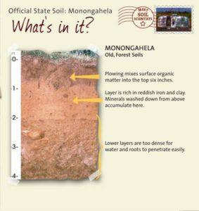 Monongahela soil profile
